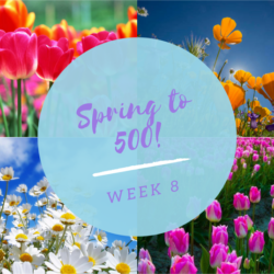 Spring to 500
